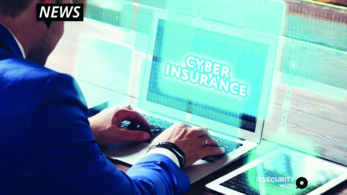 Cyber Insurance and Risk Management