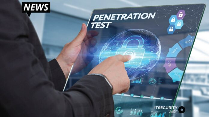affordable penetration testing to small