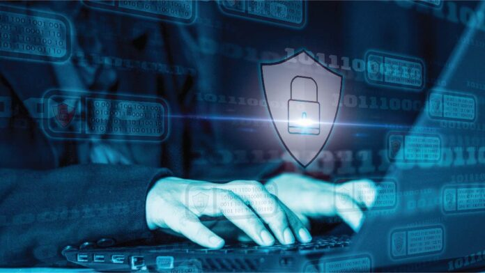 Securing Enterprise Networks Against Shadow IoT Threats with DNS